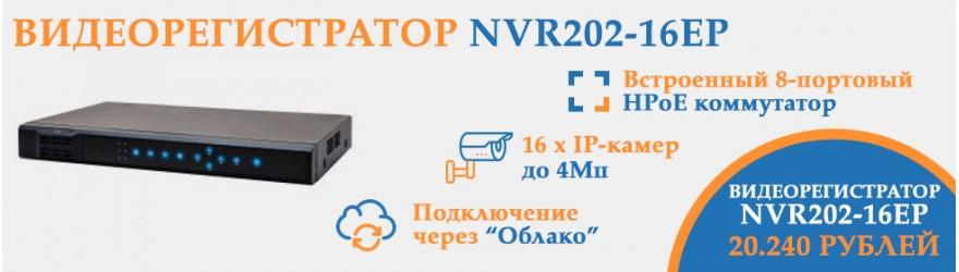 Видеорегистратор NVR202