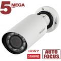 IP камера SV3210RZ