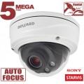 IP камера B2710DVZ